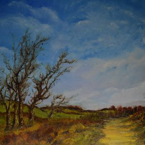 Between Storms on the Black Hill