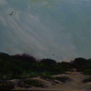 Dunes, Inchydoney